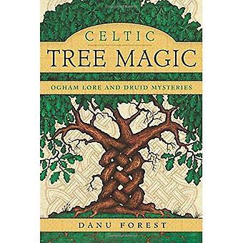 Celtic träd magi: Ogham Lore och Druid mysterier
