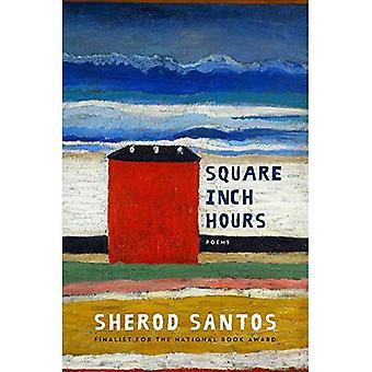 Vierkante Inch uur: gedichten