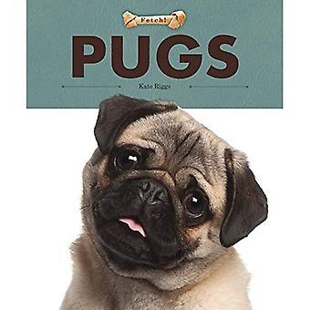 Pugs (Fetch!)