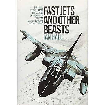Fast Jets and Other Beasts - Personal Insights from the Cockpit of the