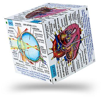 ZooBooKoo Polish Human Body Systems and Statistics Cubebook - Fold-Out Cube