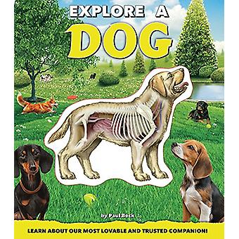 Explore a Dog by Paul Beck - 9781684122219 Book