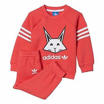 Adidas niemowląt dziewczyny królika pełna dres