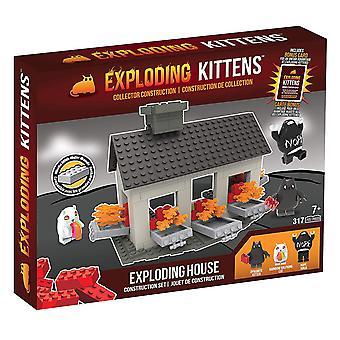 Wybuchające kocięta - sceny House