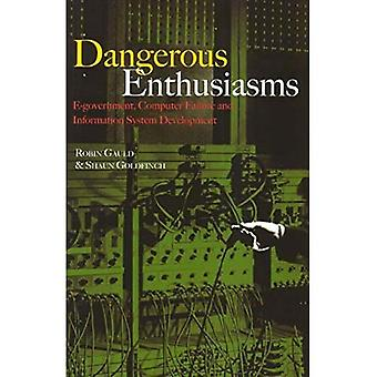 Dangerous Enthusiasms: E-Government, Computer Failure and Information Systems Development