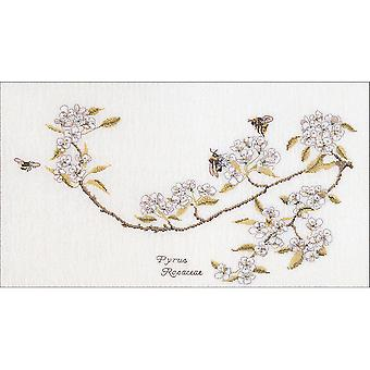 Pear Blossom On Aida Counted Cross Stitch Kit-11.5