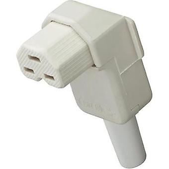 Hot wire connector C21 Socket, right angle Total number of pins: 2 + PE 16 A White Kalthoff 1 pc(s)