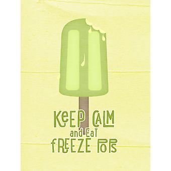 Mantieni la calma e mangiare Freeze Pops Popsicle bandiera tela dimensione casa