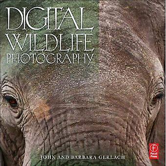 Photographie de la faune numérique