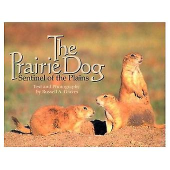 The Prairie Dog: Sentinel of the Plains