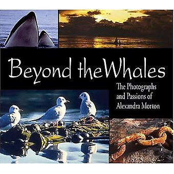 Beyond the Whales: The Photographs and Passions of Alexandra Morton