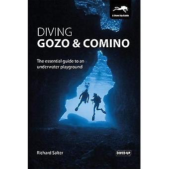 Diving Gozo & Comino: The Essential Guide to an Underwater Playground
