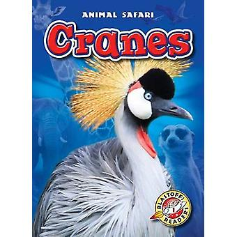 Cranes by Megan Borgert-Spaniol - 9781626172111 Book