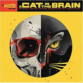 Fabio Frizzi - A Cat in the Brain / O.S.T. [Vinyl] USA import