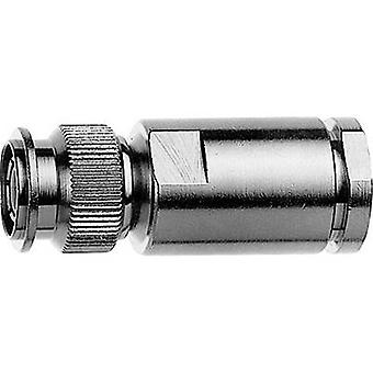 TNC connector Plug, straight 75 Ω Telegärtner J01012A0001