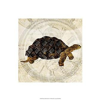 Steam Punk Turtle II Poster Print by Pam Ilosky (13 x 19)