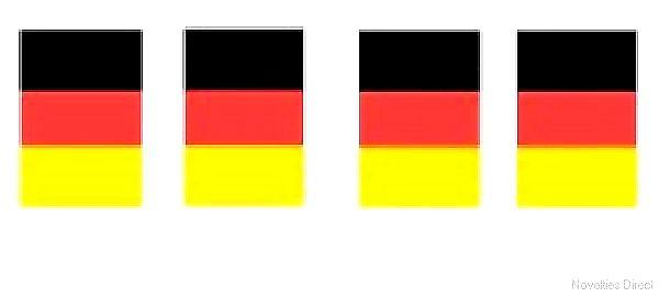 Germany Flag Bunting Rectangular Flags 6m long 20 flags