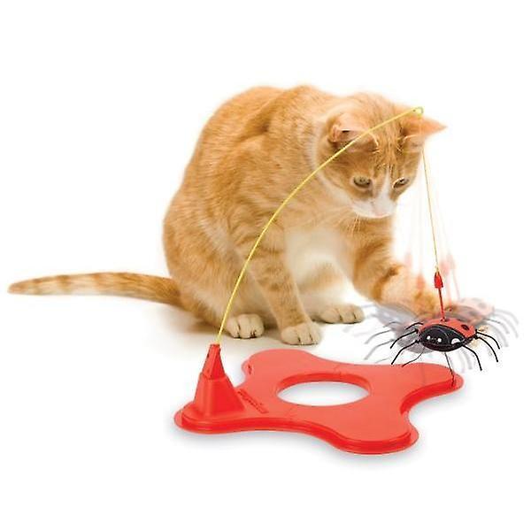 Cat toy jml