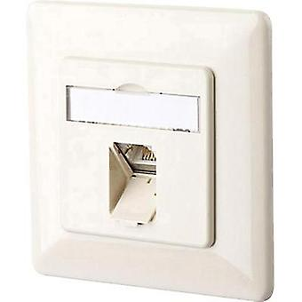 Network outlet Flush mount Insert with main panel and frame CAT 6 1 port Metz Connect Pearl white