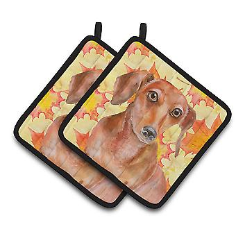 Carolines Treasures  BB9968PTHD Red Dachshund Fall Pair of Pot Holders