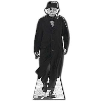 Einstein levensgrote kartonnen uitgesneden / Standee