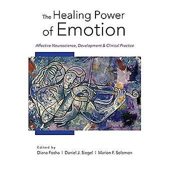 Die heilende Kraft der Emotion: affektive Neurowissenschaften, Entwicklung und klinische Praxis (Norton Serie auf zwischenmenschliche Neurobiologie)