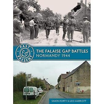 The Falaise Gap Battles: Normandy 1944 (Past & Present)