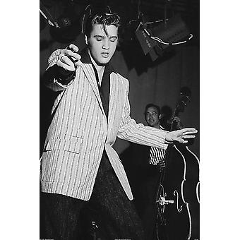 Poster - Studio B - Elvis Presley - Hips 36x24