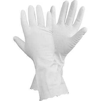 Vinyl Household cleaning glove Size (gloves): 10, XL