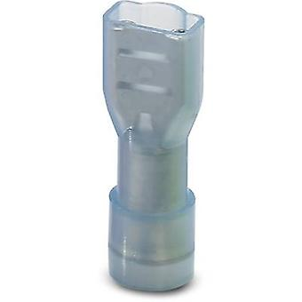 Phoenix Contact 3240540 Blade receptacle Connector width: 4.8 mm Connector thickness: 0.8 mm 180 ° Insulated Blue 50 pc