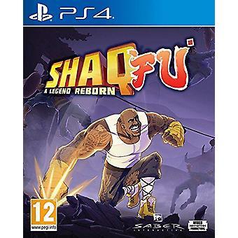 Shaq Fu A Legend Reborn PS4 Game