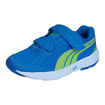 Puma Running Unisex descendiente V zapatillas / zapatos - azul y verde