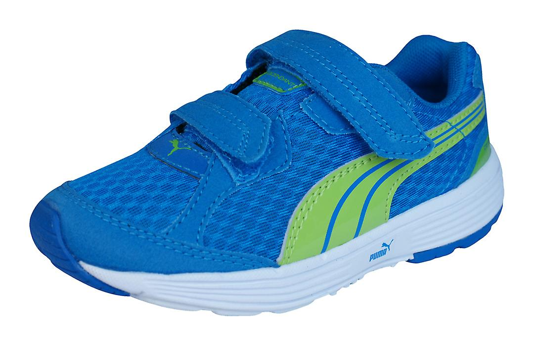 Puma Descendant V Unisex Running Trainers / Shoes - - - Blue and Green f3119a
