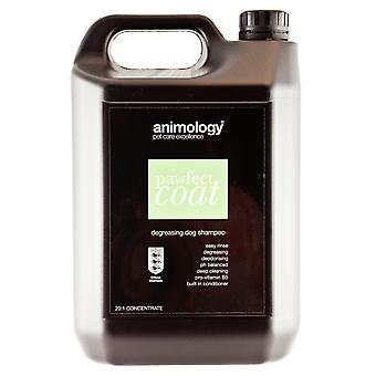 Animology hund Pawfect Coat Shampoo 5ltr