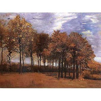 Autumn Landscape,Vincent Van Gogh,50x40cm