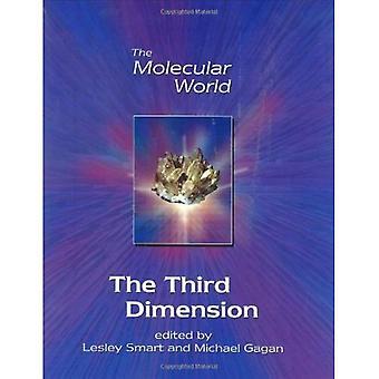 La troisième Dimension (le monde moléculaire)