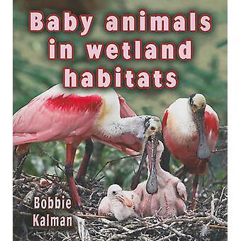 Baby Animals in Wetland Habitats by Bobbie Kalman - 9780778777434 Book