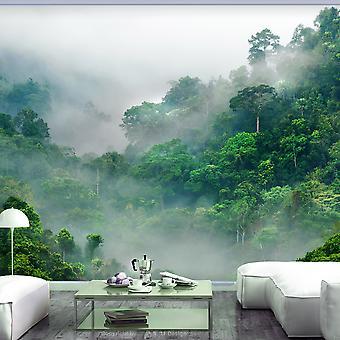 Fotomurale - Morning Fog