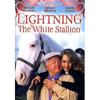 Lyn hvid hingst [DVD] USA importen