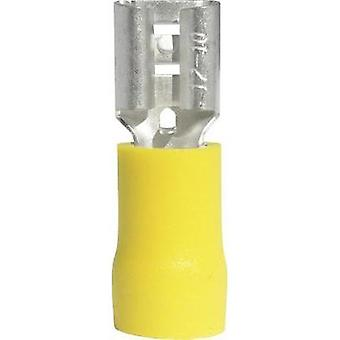 Blade receptacle Connector width: 6.3 mm Connector thickness: 0.8 mm 180 ° Partially insulated Yellow Vogt Verbindungst