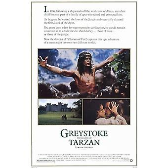 Greystoke The Legend of Tarzan Lord of the Apes c1984 Movie Poster (11 x 17)