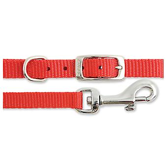 Small Bite Collar & Lead Set Nylon Reflective Red (Pack of 3)
