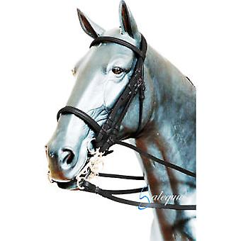 Galequus English Bridle T-19 fillet Full Marron