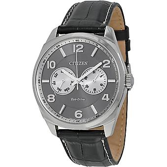 Citizen Eco-Drive Leather Mens Watch AO9020-17H