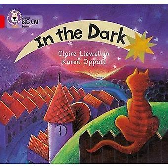 In het donker: 02a/rood een (Collins Big Cat) Band