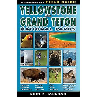 The Field Guide to Yellowstone and Grand Teton National Parks