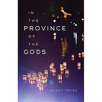In the Province of the Gods (Living Out: Gay and Lesbian Autobiog)