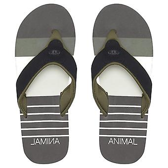 Animal Mens Jekyl Swim Flip Flops | Plum Grey