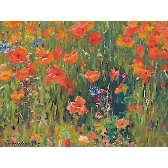 Poppies Poster Print by Robert William Vonnoh