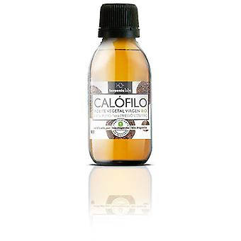 Terpenic Labs Calophyllum oil 60ml (Hygiene and health , Massage and Spa , Body oils)